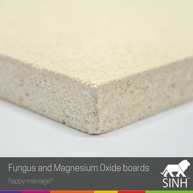 Fungus and Magnesium Oxide boards: happy marriage?
